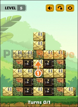 Swap The Box Jungle Level 5