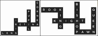 Bonza Word Puzzle Pack 1 Level 9 and 10