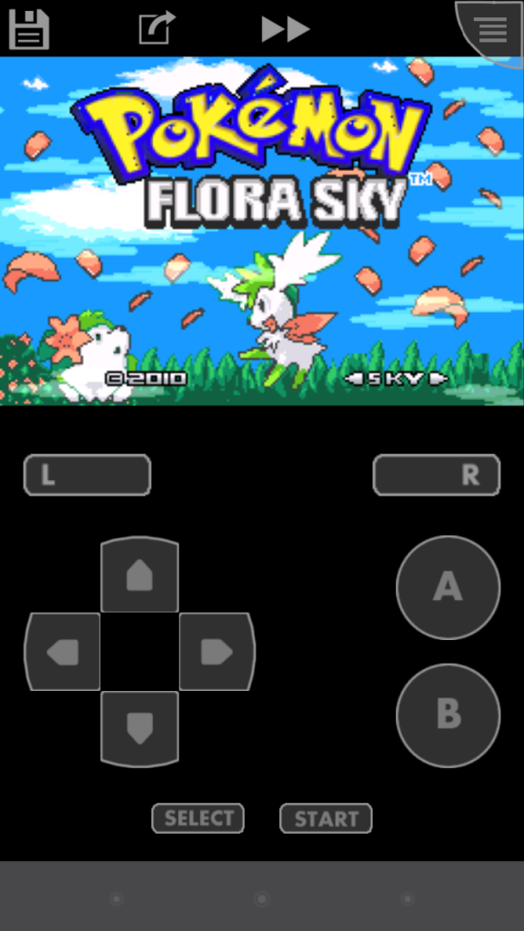 Pokemon ROM Hacks 2