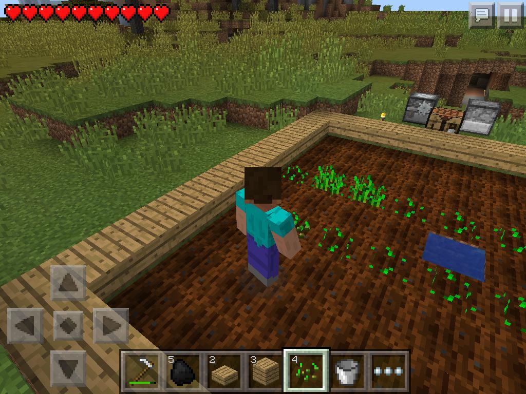 basic farm - planting crops