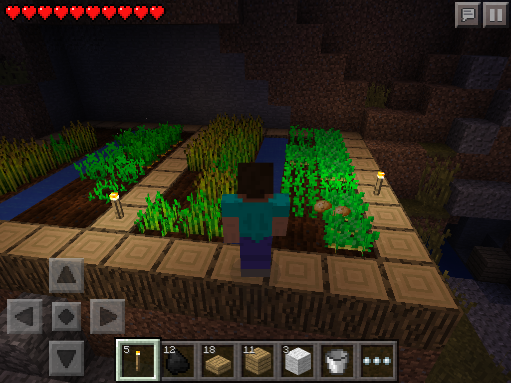 MCPE how to grow wheat, carrots, potatoes