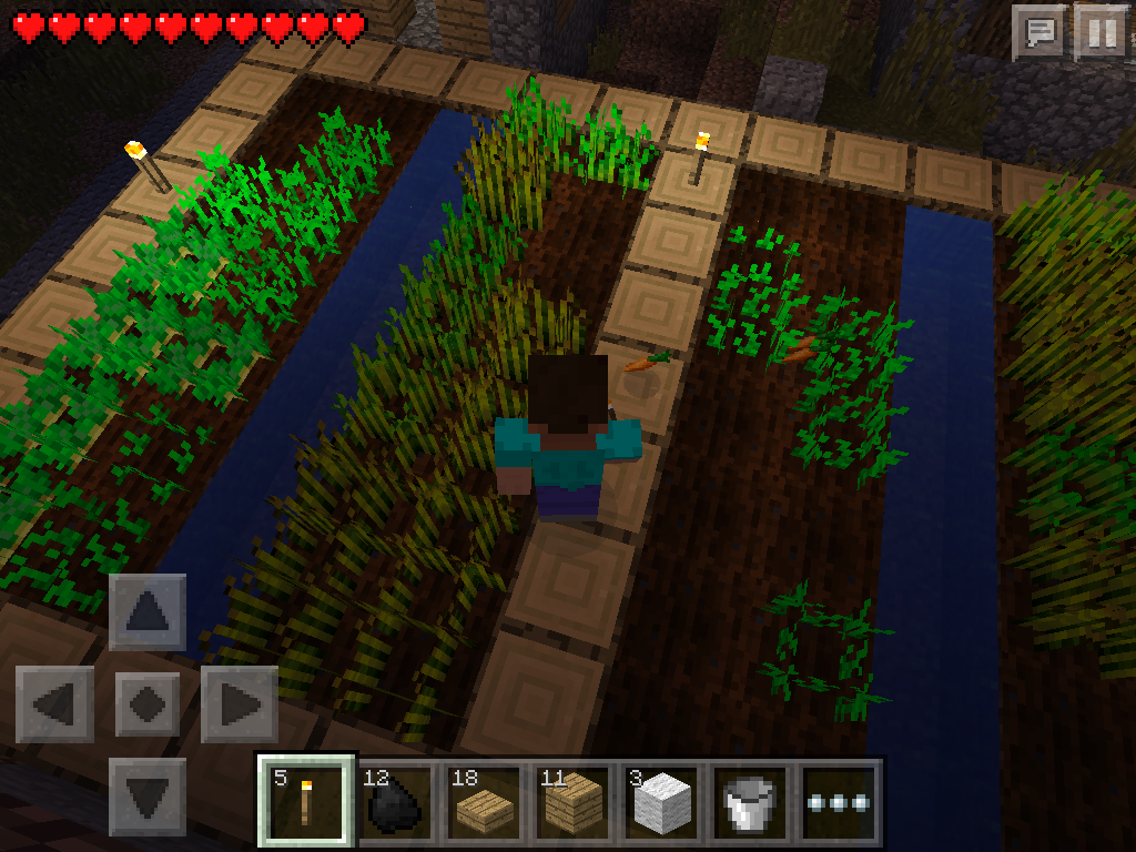 MCPE how to grow carrots, wheat, potatoes - carrots