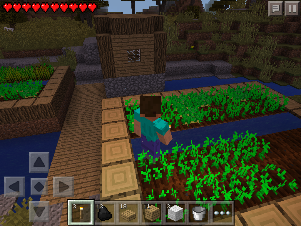 MCPE farming - potatoes in village