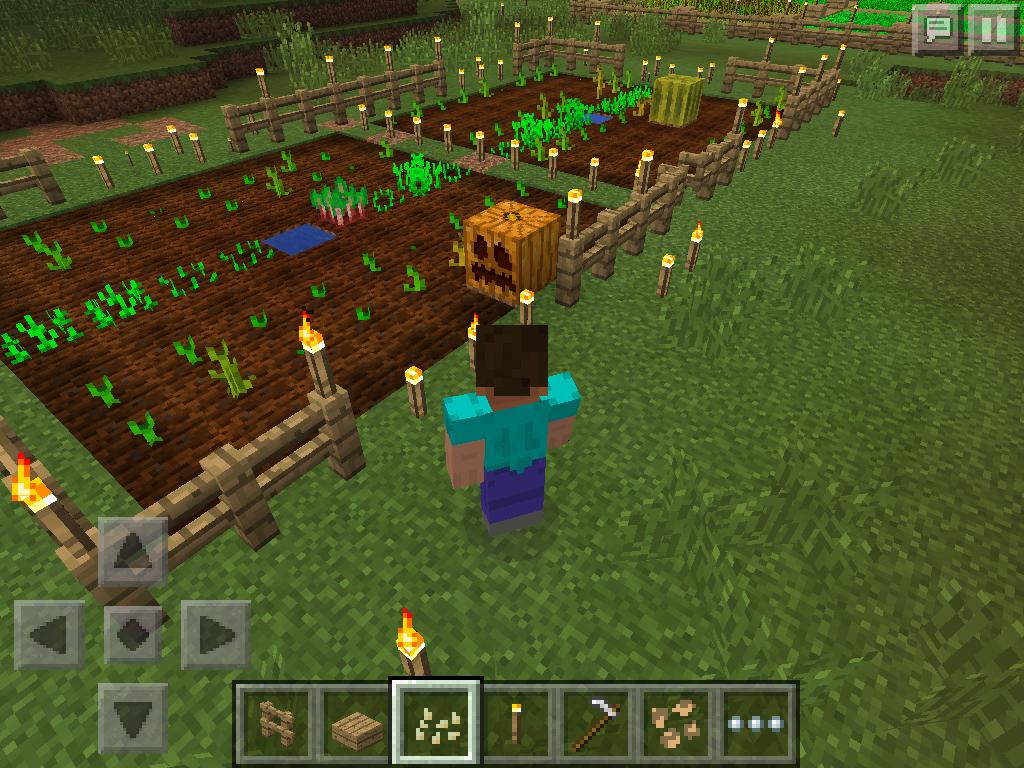 MCPE farming - pumpkin
