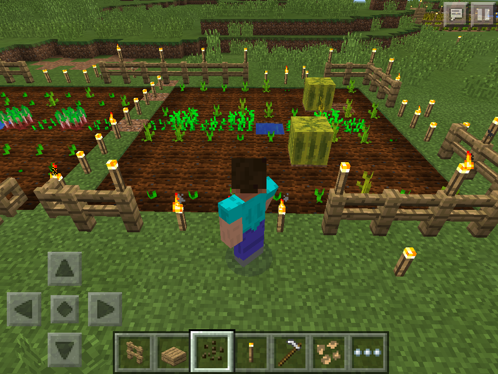 minecraft grow pumpkins