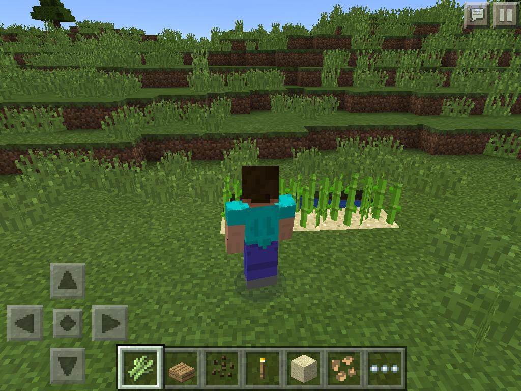 MCPE farming - sugar cane
