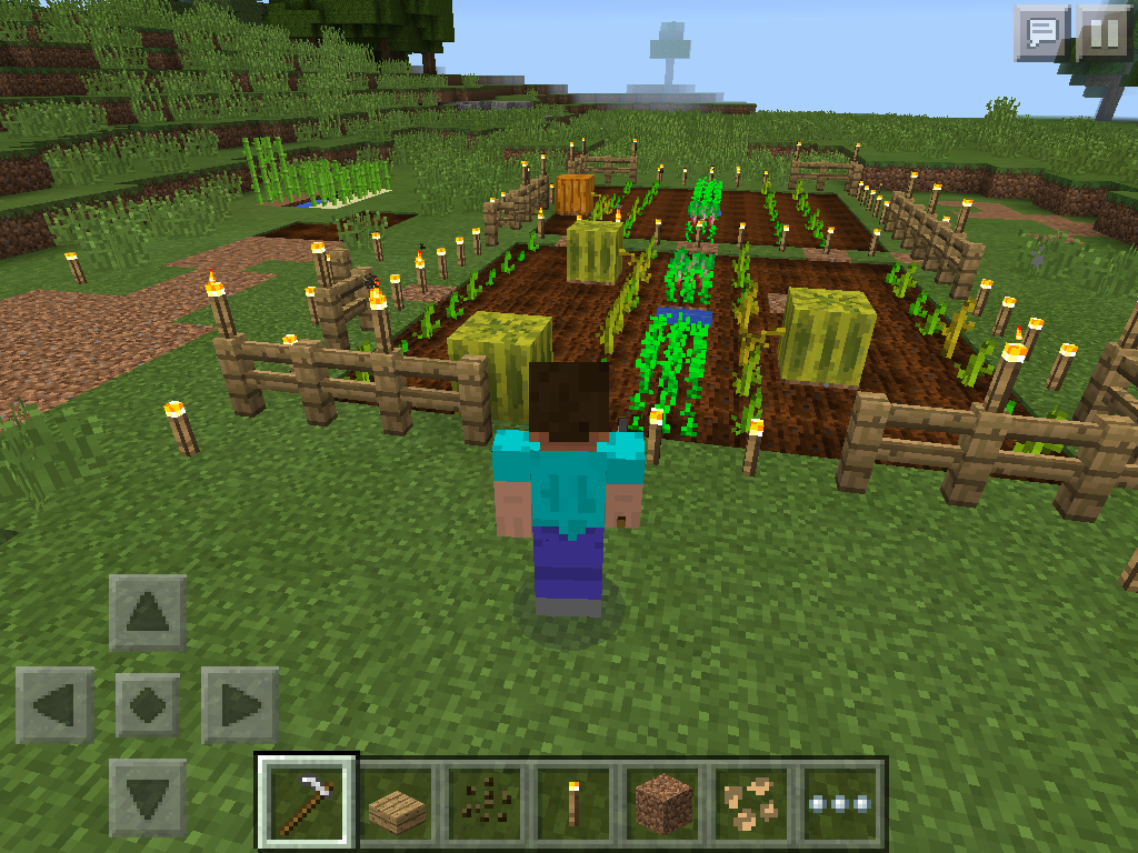 MCPE farming - melons in farm
