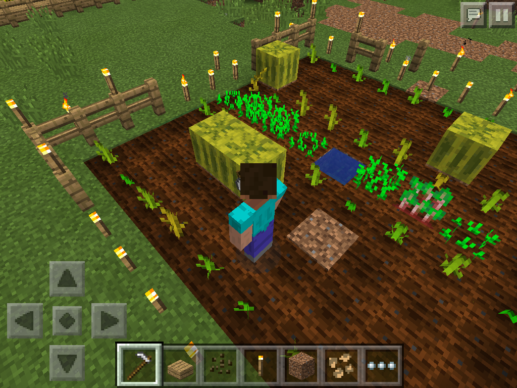 MCPE farming different growth levels